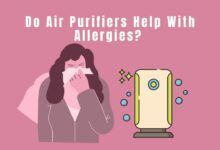 Photo of Do Air Purifiers Help With Allergies?