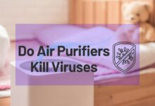 Photo of Do Air Purifiers Kill Viruses