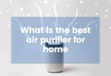 Photo of What is the best airpurifierforhome?