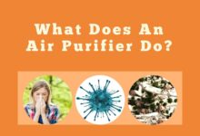 Photo of What Does An Air Purifier Do?