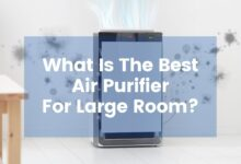 Photo of What Is The Best Air Purifier For Large Room?