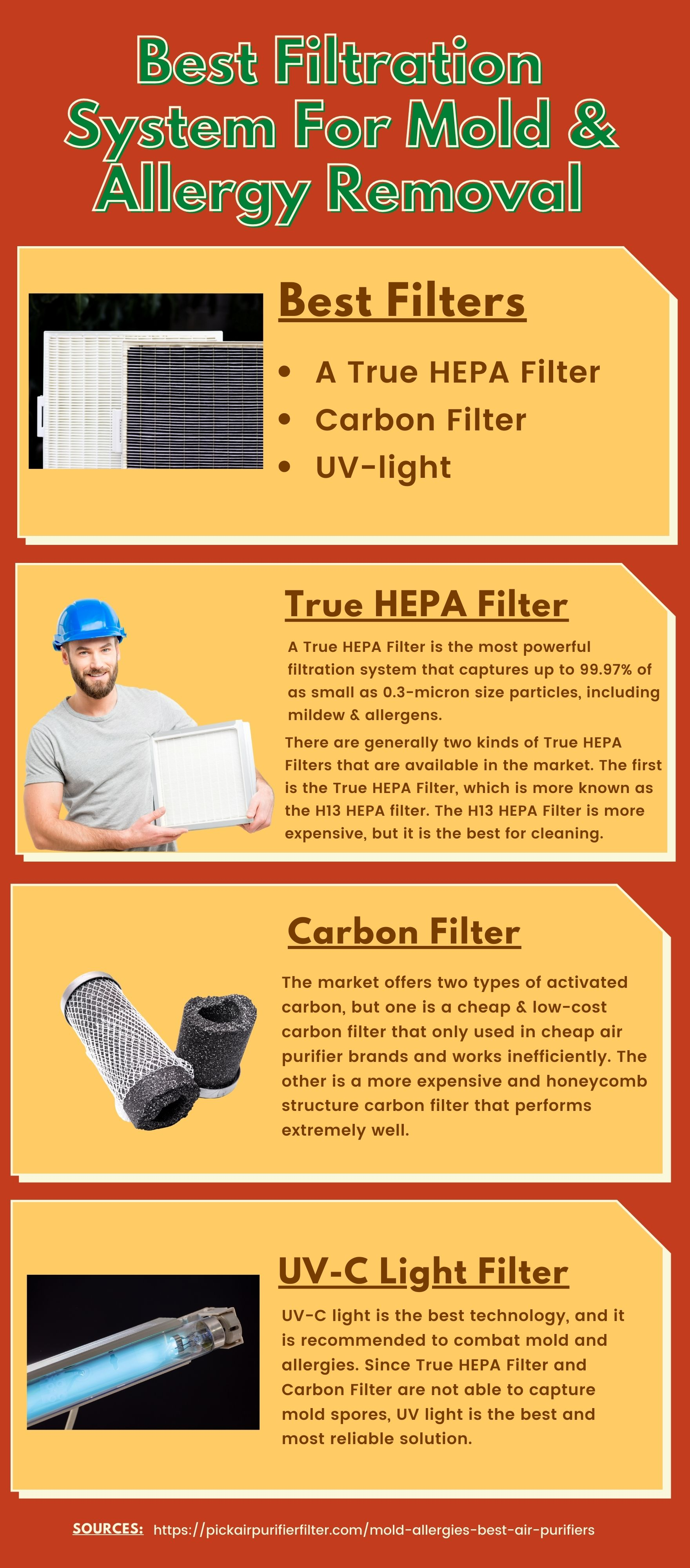 Best Air Purifier for Mold And Allergiesinfographic